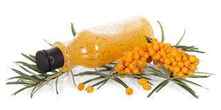 Bunch sea buckthorn puree and bottle  her berries on white. Royalty Free Stock Photo