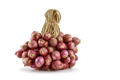 Bunch of shallots. On white background royalty free stock photos