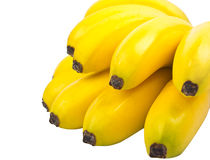 The bunch of small bananas isolated on white Stock Photo
