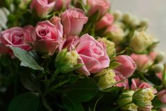 Bunch of small pink and yellow small roses on brick background. Close Stock Image