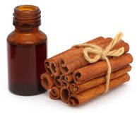 Cinnamon with essential oil. Bunch of some fresh aromatic cinnamon with essential oil in a bottle Royalty Free Stock Image