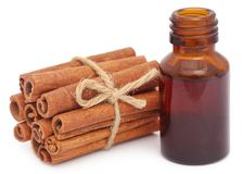 Bunch of some fresh aromatic cinnamon with essential oil. In a bottle Royalty Free Stock Photos