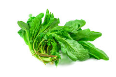 Bunch of spinach isolated on white background Royalty Free Stock Photo