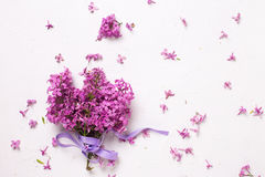 Bunch of splendid lilac flowers on grey textured background. Royalty Free Stock Photography