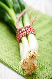 Bunch of spring onions Stock Photo