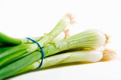 A bunch of spring onions Stock Photo