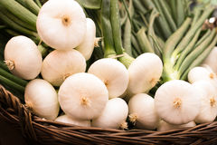 Bunch of spring onions  in a basket at farmers Stock Photography