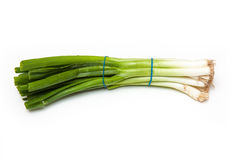 Bunch of spring onions Stock Photography