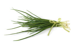 A bunch of spring onions, tied with a ribbon Stock Photo