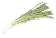 Bunch spring onions on white Stock Images