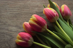 Bunch of spring tulips. Bunch of tulips on wooden background; high angle view Stock Photos