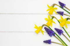 Bunch of springflowers on wooden surface Stock Images