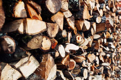 Bunch of spruce fire wood ready for the fireplace Stock Photos