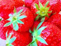 Bunch of strawberries Stock Photos