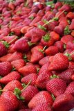 Bunch of Strawberries. Close up of a group of fresh delicious red strawberries from a farmers market Stock Photos