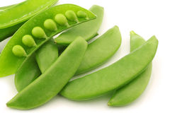 Bunch of sugar snaps with one opened pod Royalty Free Stock Photography