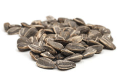 Bunch of Sunflower Seeds Royalty Free Stock Photo