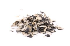 Bunch of sunflower seeds peel. Royalty Free Stock Photography