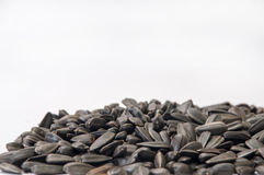A bunch of sunflower seeds on a white background Stock Photos