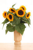 Bunch of sunflowers Stock Image