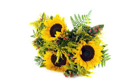 A bunch of sunflowers Royalty Free Stock Photos