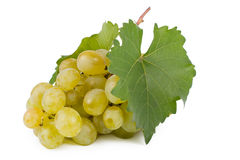 Bunch of sweet green grapes Stock Photography