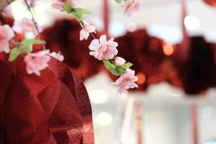 A bunch of sweet pink cheery blossom with blurred Chinese lanterns hanging on the wall royalty free stock images
