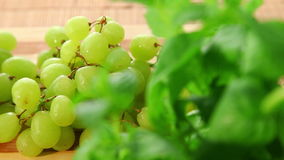 Bunch of tasty sweet green grapes stock footage