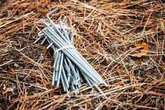 Bunch of tent pegs Royalty Free Stock Photo