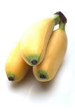 A bunch of Thai bananas Royalty Free Stock Images