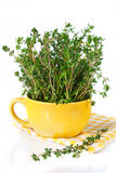 Bunch of thyme. Royalty Free Stock Photos