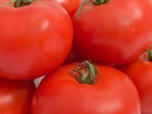 Bunch of tomato Royalty Free Stock Photos