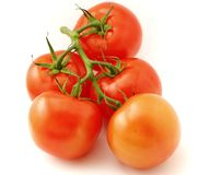 The bunch of tomatoes Royalty Free Stock Images