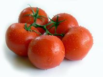 Bunch of tomatoes. Bunch of red tomatoes Stock Photography