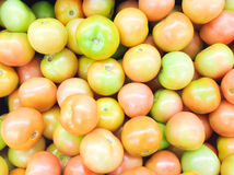 A bunch of tomatoes Stock Image