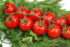 Bunch of tomatoes on a green parsley Stock Photo