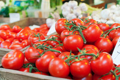 Bunch of tomatoes. Heap of tomatoes on market Stock Image