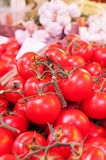 Bunch of tomatoes. Heap of tomatoes on market Royalty Free Stock Image