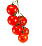 Bunch of tomatoes isolate Stock Photography