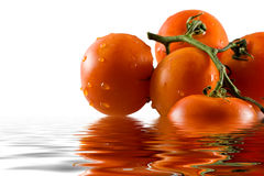 Bunch of tomatoes reflecting in water Stock Image