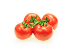 Bunch of tomatoes with stem Stock Photos