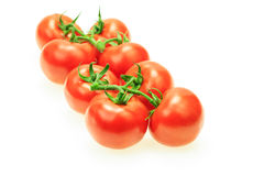 Bunch of tomatoes with stem Stock Image