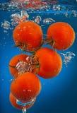 Bunch of tomatoes underwater Stock Image