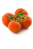 Bunch of tomatoes, vertical, space at bottom Stock Photo