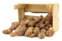 Bunch of topinambur roots (helianthus tuberosus) in a wooden crate Stock Images