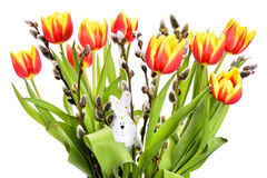 Bunch of tulip flowers Stock Photo