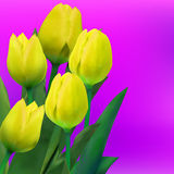 Bunch of tulip flowers on the table. EPS 8 Royalty Free Stock Photo