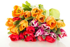 Bunch of tulips royalty free stock images