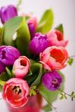 Bunch of tulips Stock Photos