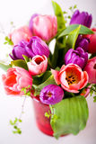 Bunch of tulips Royalty Free Stock Photos
